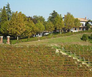Viotti vingård
